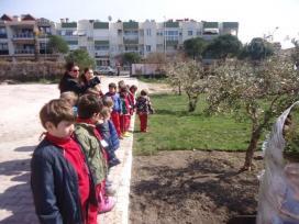 bahçeşehir (2)